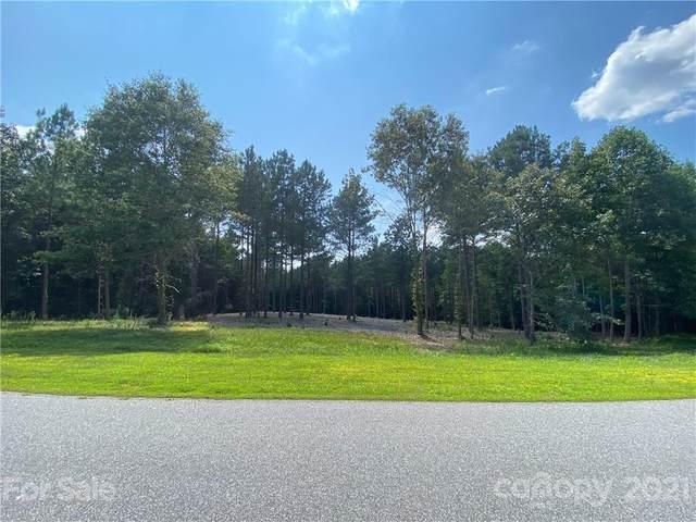 274 Gardner Point Drive, Stony Point, NC 28678 (#3770736) :: Besecker Homes Team