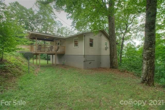 851 Spruce Flats Road, Maggie Valley, NC 28751 (#3770784) :: Carver Pressley, REALTORS®