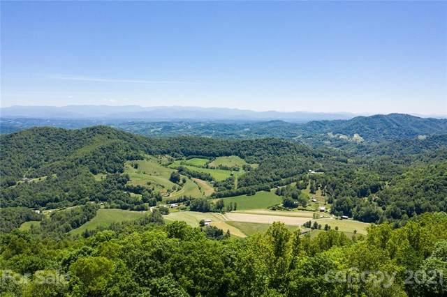 999999 Cottonwood Drive, Marshall, NC 28753 (#3770957) :: Stephen Cooley Real Estate