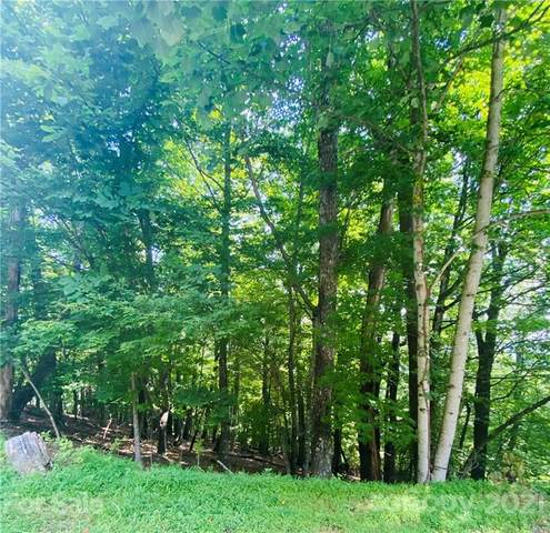 169 Bobcat Lair Drive #9, Mills River, NC 28759 (#3770983) :: Cloninger Properties