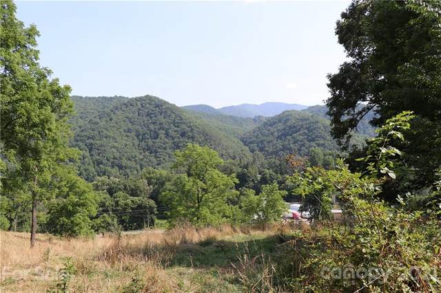 90 Last Coyote Trail, Canton, NC 28716 (#3771067) :: Home Finder Asheville