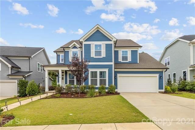948 Elderberry Lane, Lake Wylie, SC 29710 (#3771739) :: Exit Realty Elite Properties