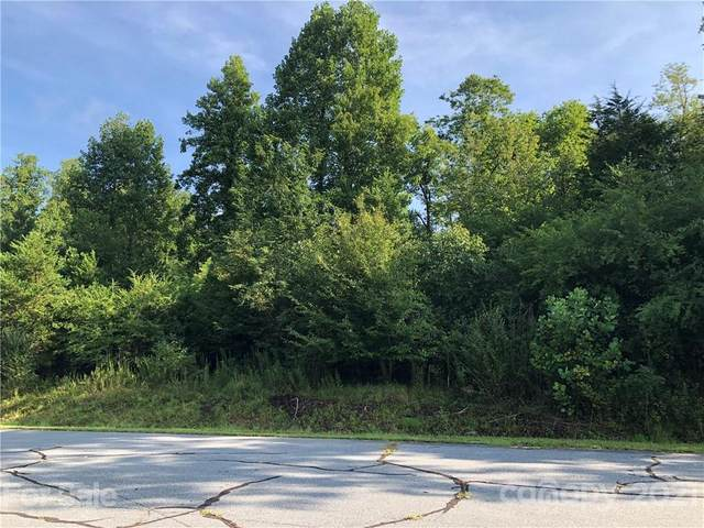 00 Desota Ridge, Rutherfordton, NC 28139 (#3772510) :: The Ordan Reider Group at Allen Tate