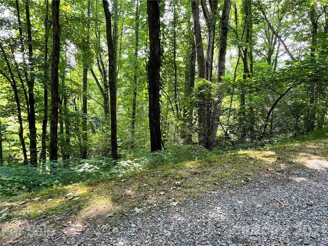 00 Fox Run Road A29 & A30, Waynesville, NC 28785 (#3772604) :: Mossy Oak Properties Land and Luxury