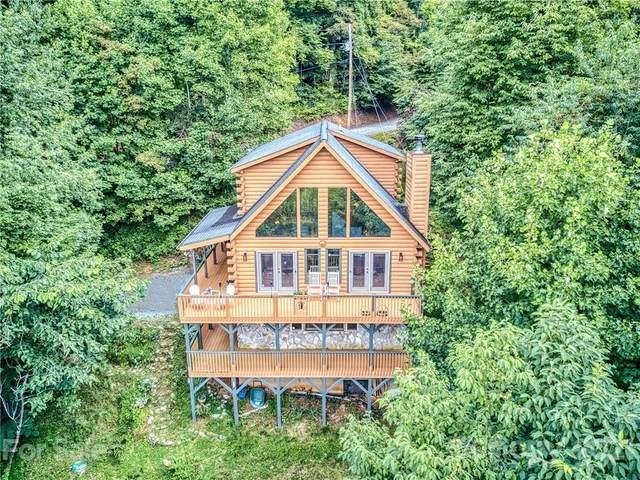 432 Appaloosa Trail, Waynesville, NC 28785 (#3773048) :: MOVE Asheville Realty