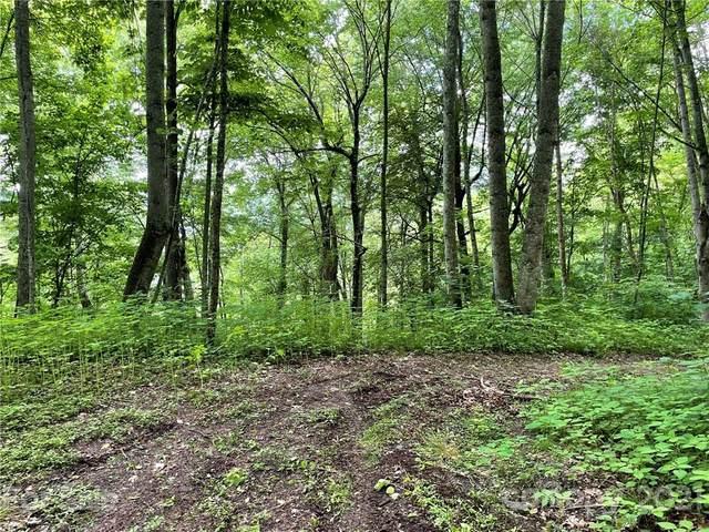 Lots 315 & 317 Mcguires Ridge, Waynesville, NC 28786 (#3773141) :: Mossy Oak Properties Land and Luxury