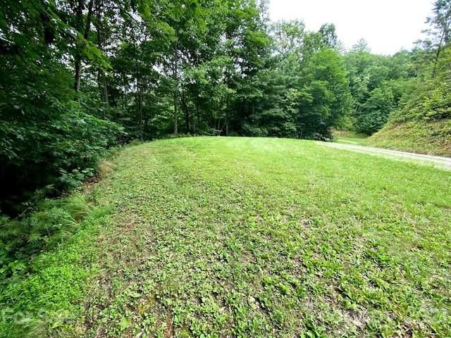 99999 Double Springs Road, Almond, NC 28702 (#3773150) :: Ann Rudd Group