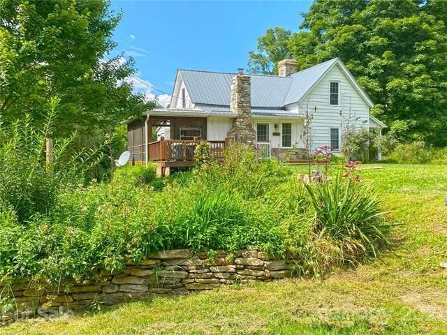 18270 Nc 209 Highway, Hot Springs, NC 28743 (#3773899) :: Home Finder Asheville