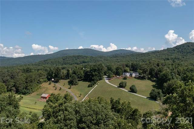 9999 Garren Creek Road, Fairview, NC 28730 (#3774180) :: Home Finder Asheville