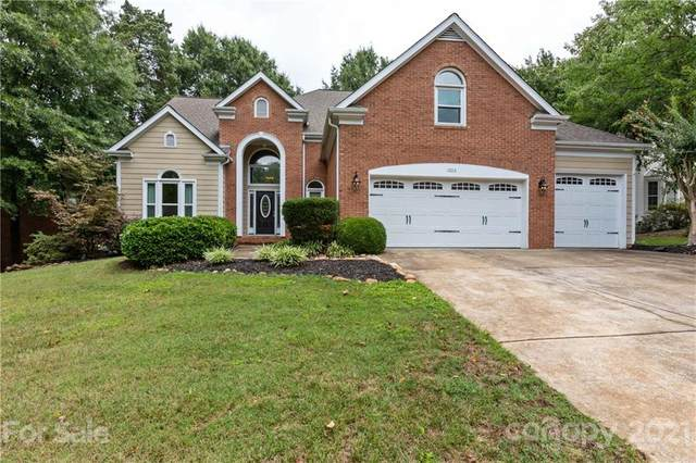 11013 Stonepath Lane, Charlotte, NC 28277 (#3774605) :: Exit Realty Elite Properties