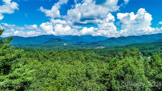 187 Settings Boulevard #237, Black Mountain, NC 28711 (#3774911) :: Todd Lemoine Team