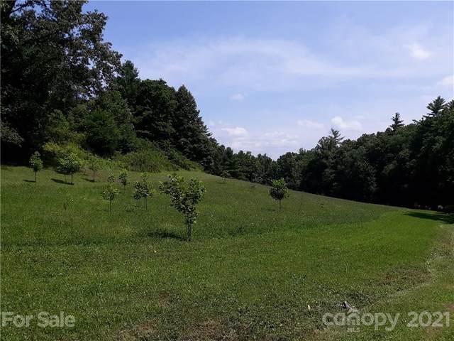 9 Beatrice Way, Waynesville, NC 28785 (#3774985) :: Home Finder Asheville
