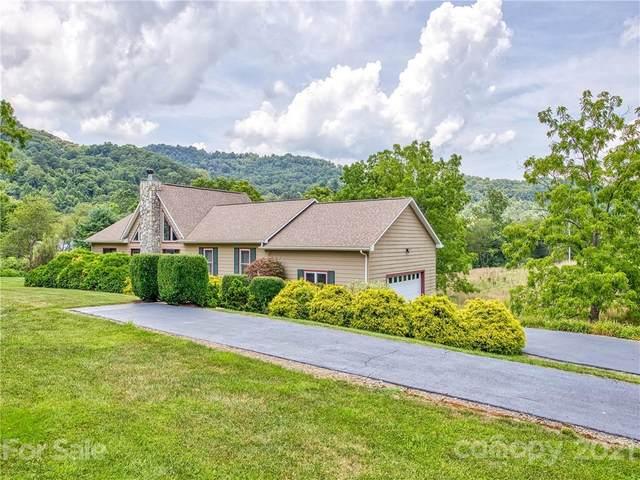 448 Frank Davis Road, Waynesville, NC 28785 (#3775150) :: Besecker Homes Team