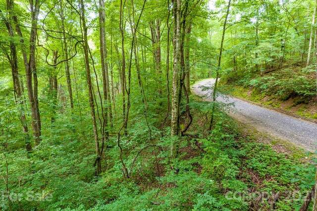 Lot 34 Rainbow Trout Drive #34, Tuckasegee, NC 28783 (#3775664) :: Mossy Oak Properties Land and Luxury