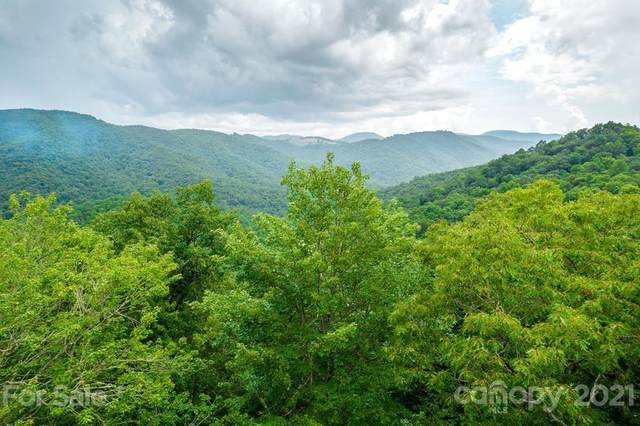 Lot 14 Forest View Lane #14, Tuckasegee, NC 28783 (#3775675) :: Mossy Oak Properties Land and Luxury