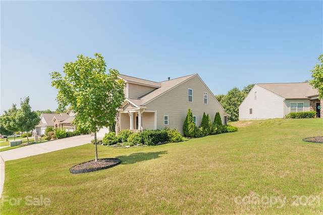 13204 Hunting Birds Lane, Charlotte, NC 28278 (#3775680) :: Exit Realty Elite Properties