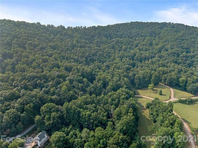 115 S Lindon Cove Road, Candler, NC 28715 (#3777141) :: Mossy Oak Properties Land and Luxury