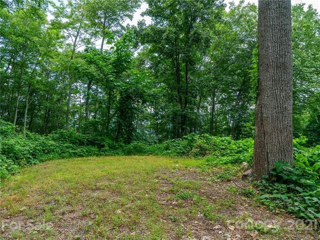 45 Flora Rose Trail, Asheville, NC 28803 (#3777355) :: Mossy Oak Properties Land and Luxury