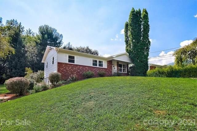 410 Lower Grassy Branch Road, Asheville, NC 28805 (#3777826) :: Briggs American Homes