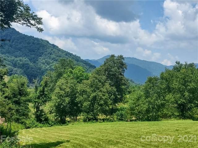 99999 Split Pine Cove #2, Clyde, NC 28721 (#3777933) :: Modern Mountain Real Estate