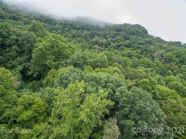 99999 Split Pine Cove #19, Clyde, NC 28721 (#3777935) :: Modern Mountain Real Estate