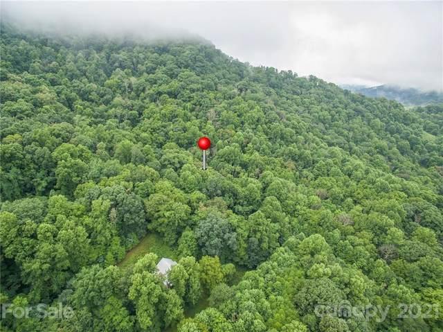 99999 Split Pine Cove #20, Clyde, NC 28721 (#3777936) :: Modern Mountain Real Estate