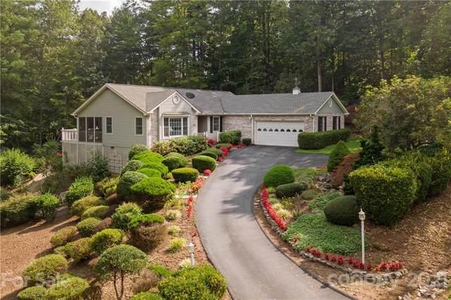 71 Allen Springs Road, Horse Shoe, NC 28742 (#3778628) :: Home Finder Asheville