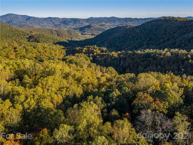 0 Dancing Bear Drive #63, Hendersonville, NC 28792 (#3778921) :: LePage Johnson Realty Group, LLC