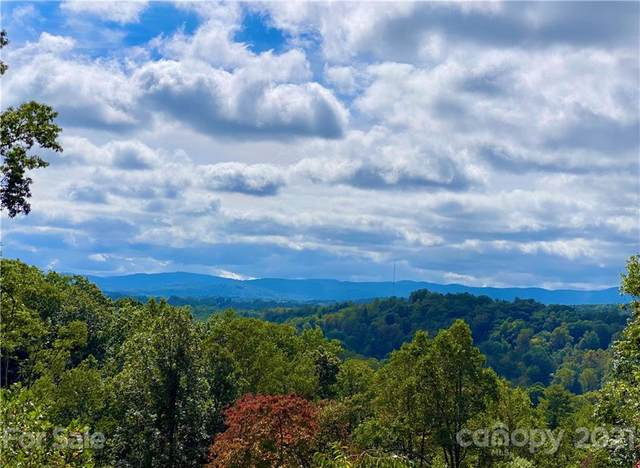 Lot w6 Curtain Bluff, Hendersonville, NC 28791 (#3779029) :: High Vistas Realty