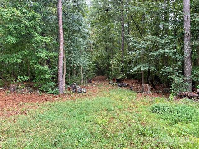 000 Smith Road, Indian Land, SC 29707 (#3779391) :: Scarlett Property Group