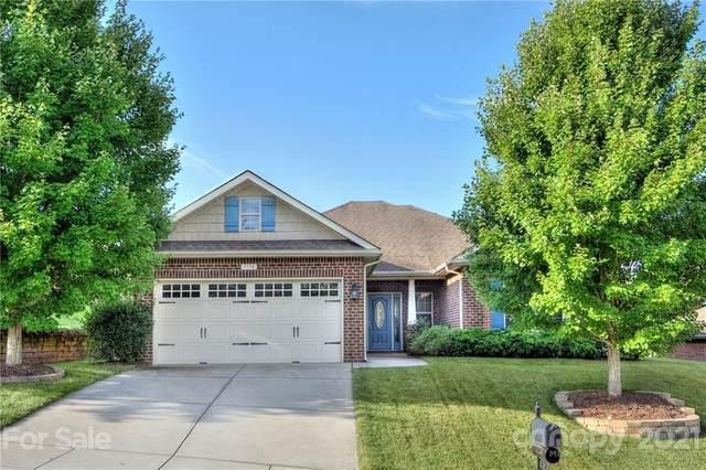 7274 Bradberry Lane, Denver, NC 28037 (#3779674) :: Besecker Homes Team