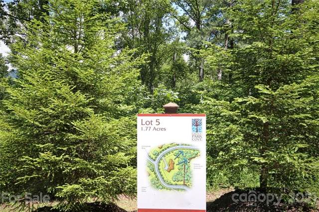 75 Grove Cove Drive Lot 5, Asheville, NC 28804 (#3779716) :: Mossy Oak Properties Land and Luxury
