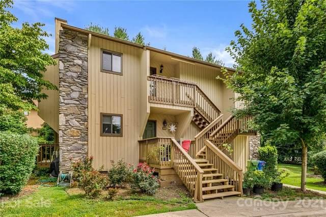 202 Birch Forest Lane, Asheville, NC 28803 (#3779907) :: Home Finder Asheville