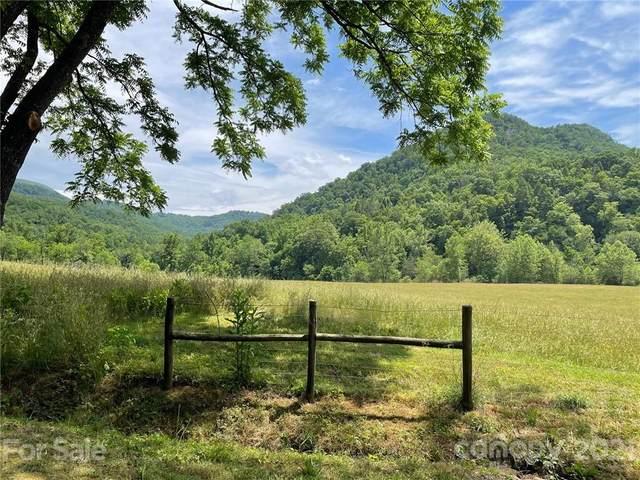 000 Twisted Birch Drive, Hendersonville, NC 28792 (#3779921) :: Robert Greene Real Estate, Inc.