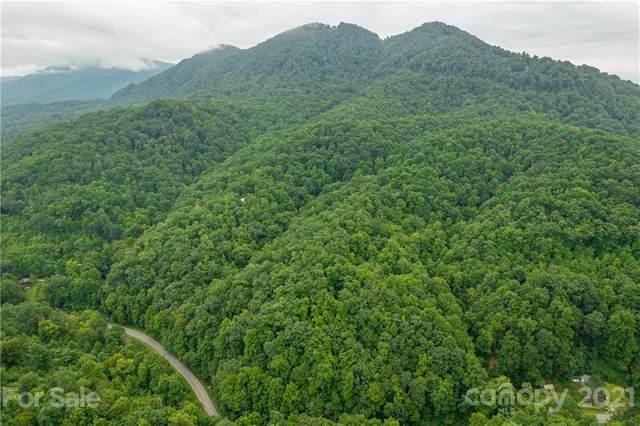 TBD Bat Cave Road, Old Fort, NC 28762 (#3780198) :: Ann Rudd Group