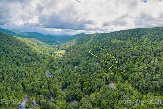 9999 Ridgehaven Drive #3, Asheville, NC 28804 (#3780767) :: Mossy Oak Properties Land and Luxury