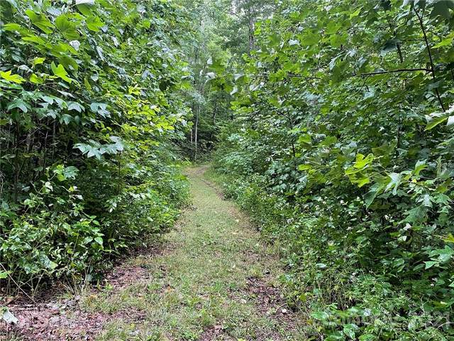 291 Long Splice Way #173, Sylva, NC 28779 (#3781235) :: The Ordan Reider Group at Allen Tate