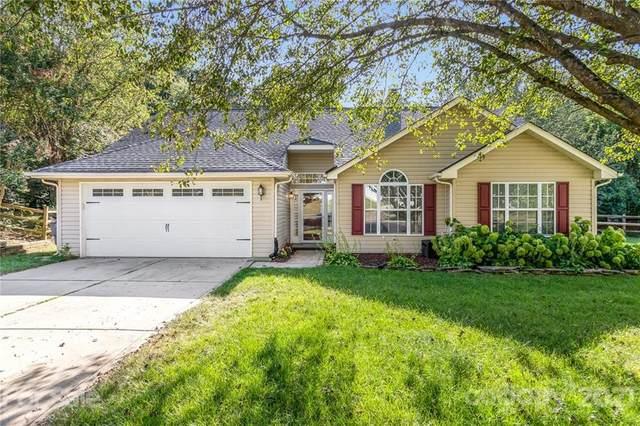 11631 English Oak Lane, Charlotte, NC 28278 (#3781368) :: Besecker Homes Team