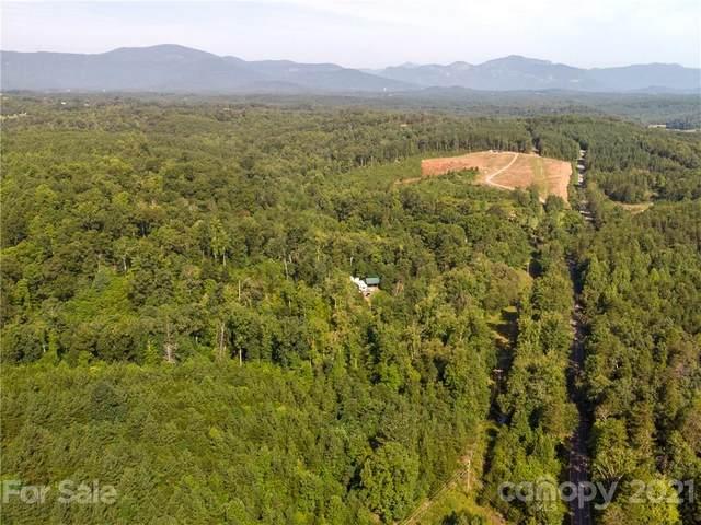 2915 Big Level Road, Mill Spring, NC 28756 (#3781622) :: Home Finder Asheville