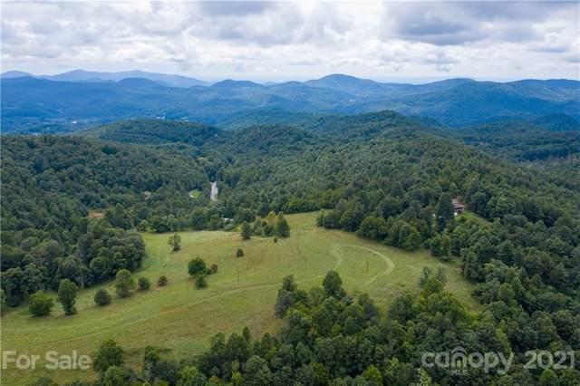 4105 Pinnacle Mountain Road, Zirconia, NC 28790 (#3782141) :: The Ordan Reider Group at Allen Tate