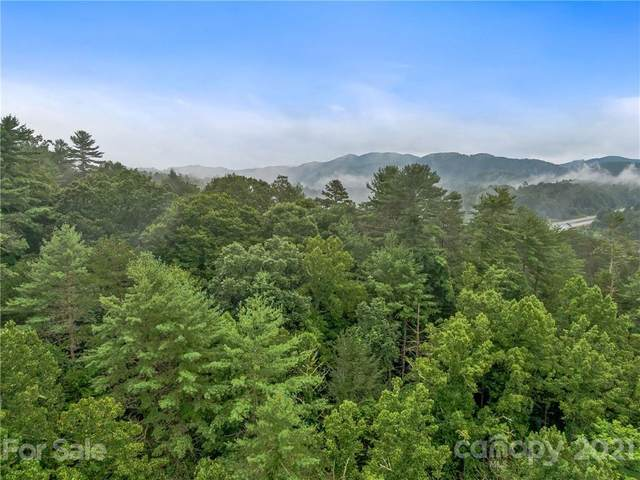 60 Mareldo Drive, Weaverville, NC 28787 (#3782150) :: Home Finder Asheville