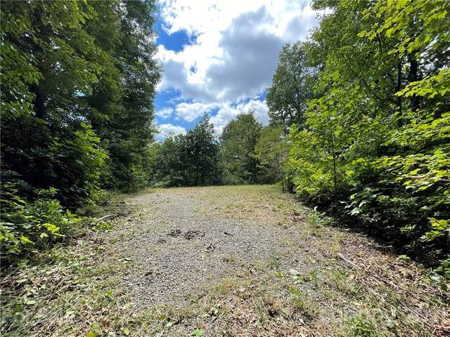 10 +/- Acres Forest Brook Drive, Black Mountain, NC 28711 (#3782619) :: LePage Johnson Realty Group, LLC