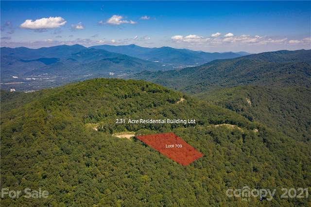 506 Southcliff Parkway #709, Fairview, NC 28730 (#3782674) :: Home Finder Asheville