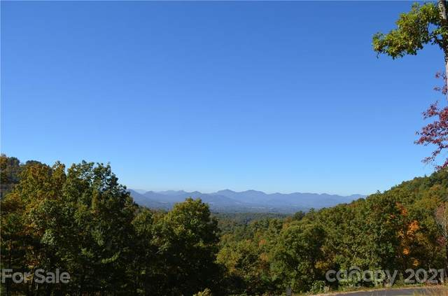 81 Starling Pass #90, Asheville, NC 28804 (#3782798) :: Home Finder Asheville