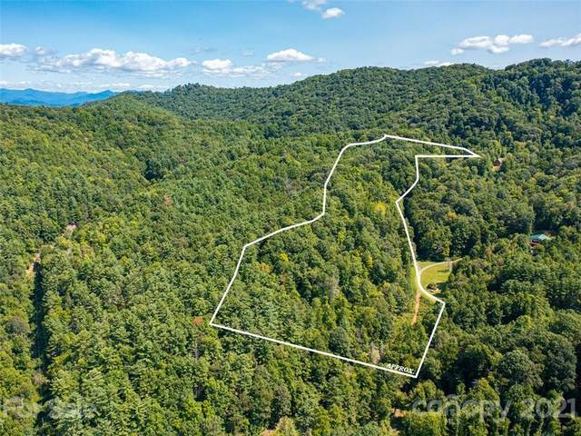 TBD Meadow Fork School Road, Hot Springs, NC 28743 (#3783135) :: Home Finder Asheville