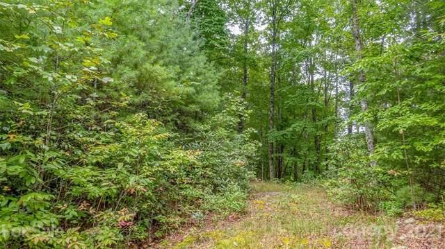 tbd Big Branch Road L56a, Brevard, NC 28712 (#3784179) :: Carver Pressley, REALTORS®
