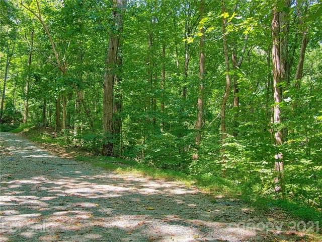 LOTS 319 & 320 Big Rock Lane, Lake Lure, NC 28746 (#3784203) :: Puma & Associates Realty Inc.