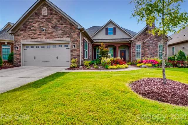 14817 High Bluff Court, Charlotte, NC 28278 (#3784329) :: Puma & Associates Realty Inc.
