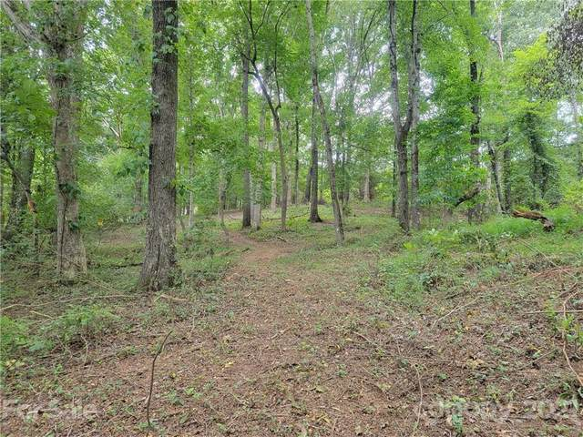 131 Kester Drive, Cherryville, NC 28021 (#3784441) :: Carlyle Properties