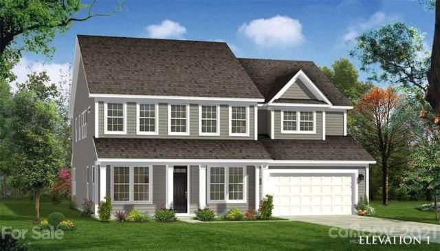 1539 Striped Bass Lane #304, Lake Wylie, SC 29710 (#3784565) :: Exit Realty Elite Properties